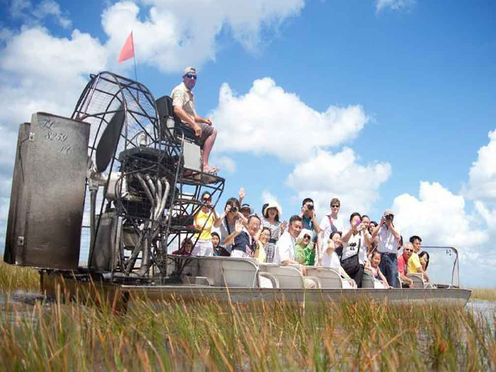 reviews Aventura inolvidable por los pantanos de Everglades