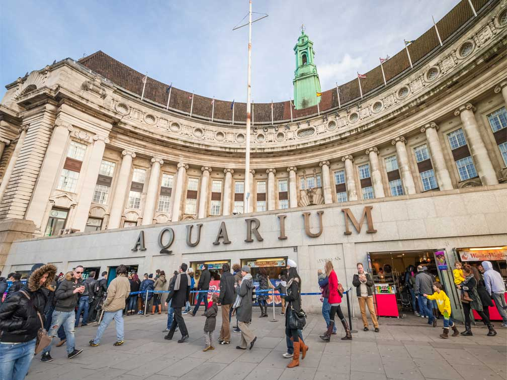 reviews Entradas al acuario Sea Life de Londres