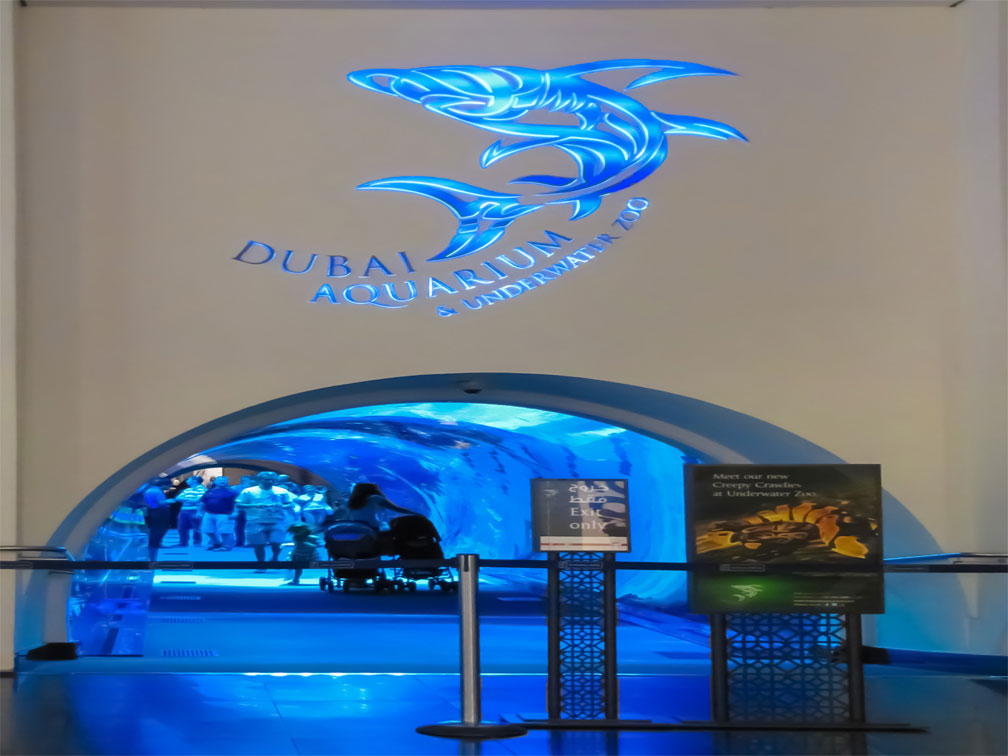 Tickets Dubai Aquarium & Underwater Zoo + Transporte