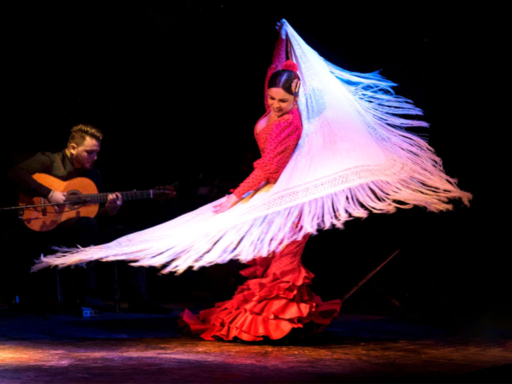 reviews Show de flamenco en Granada